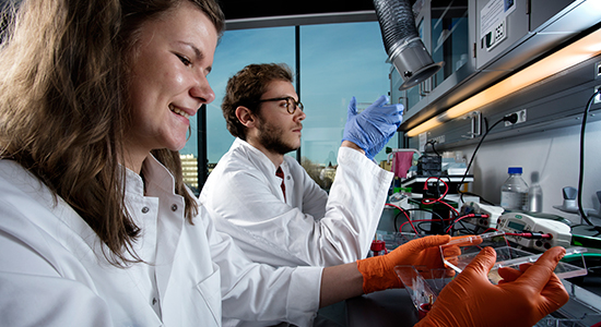 Researchers at BRIC