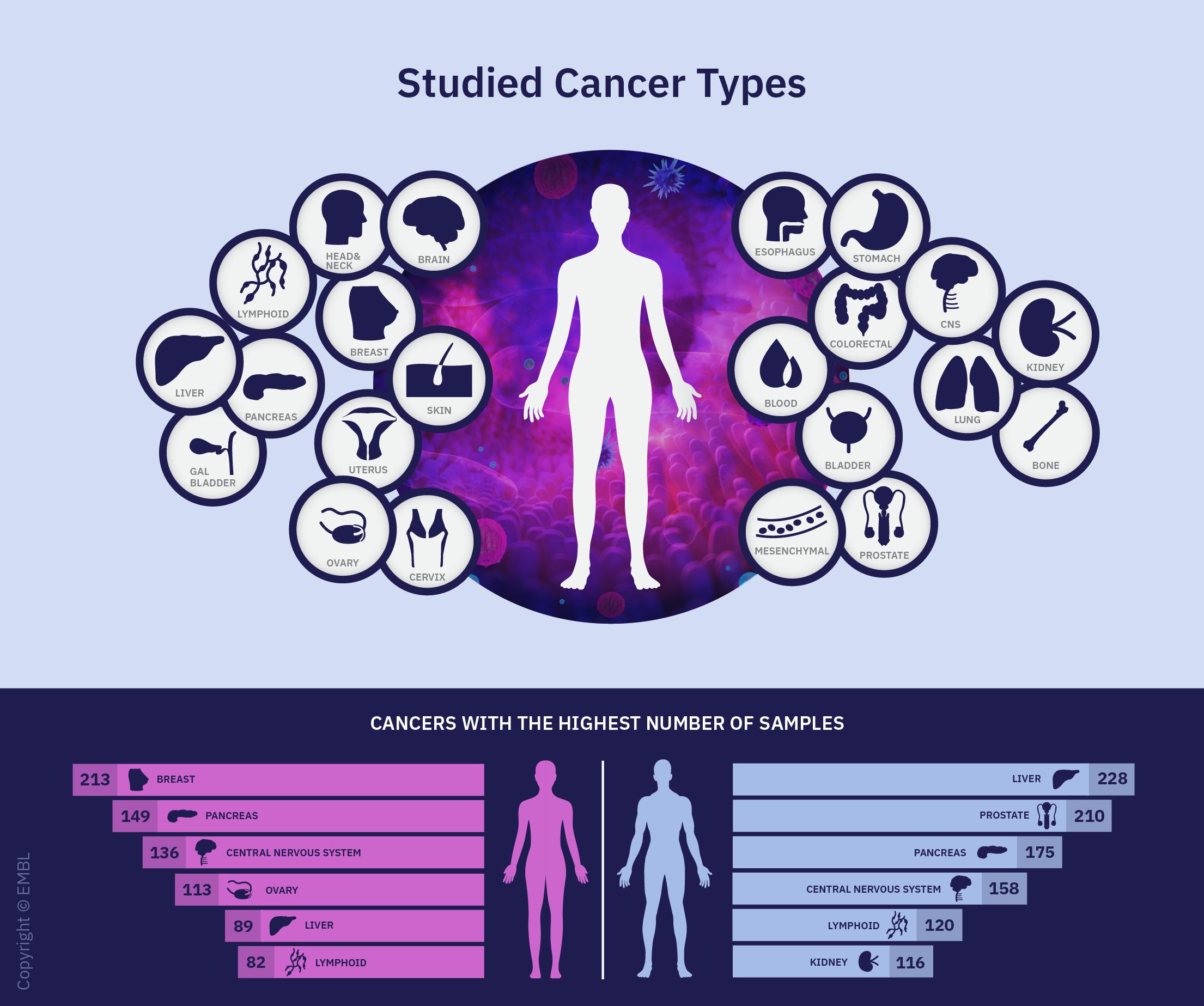 Infografik om undersøgte kræfttyper.