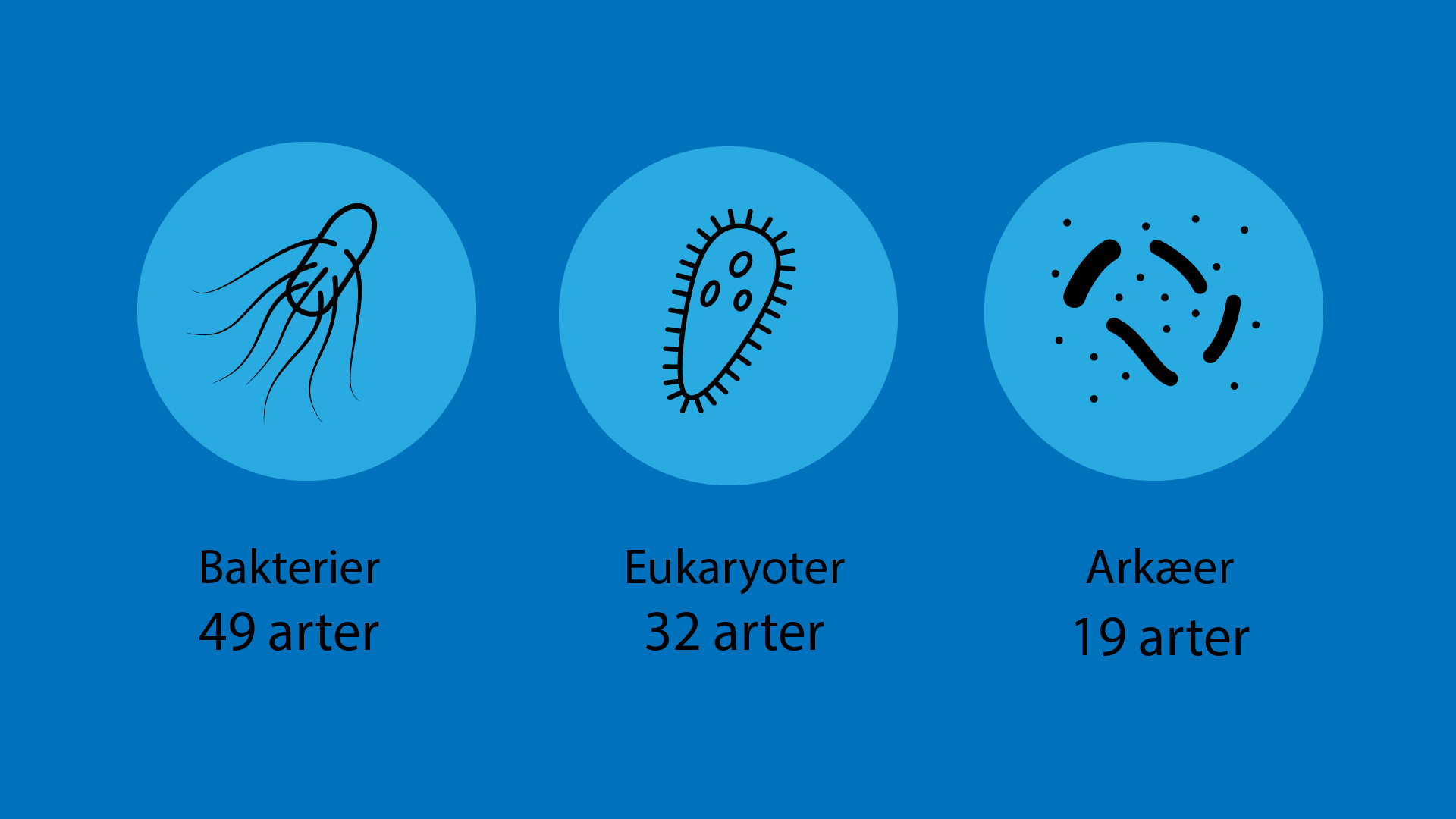 49 bakteriearter, 19 arkæarter og 32 eukaryot-arter