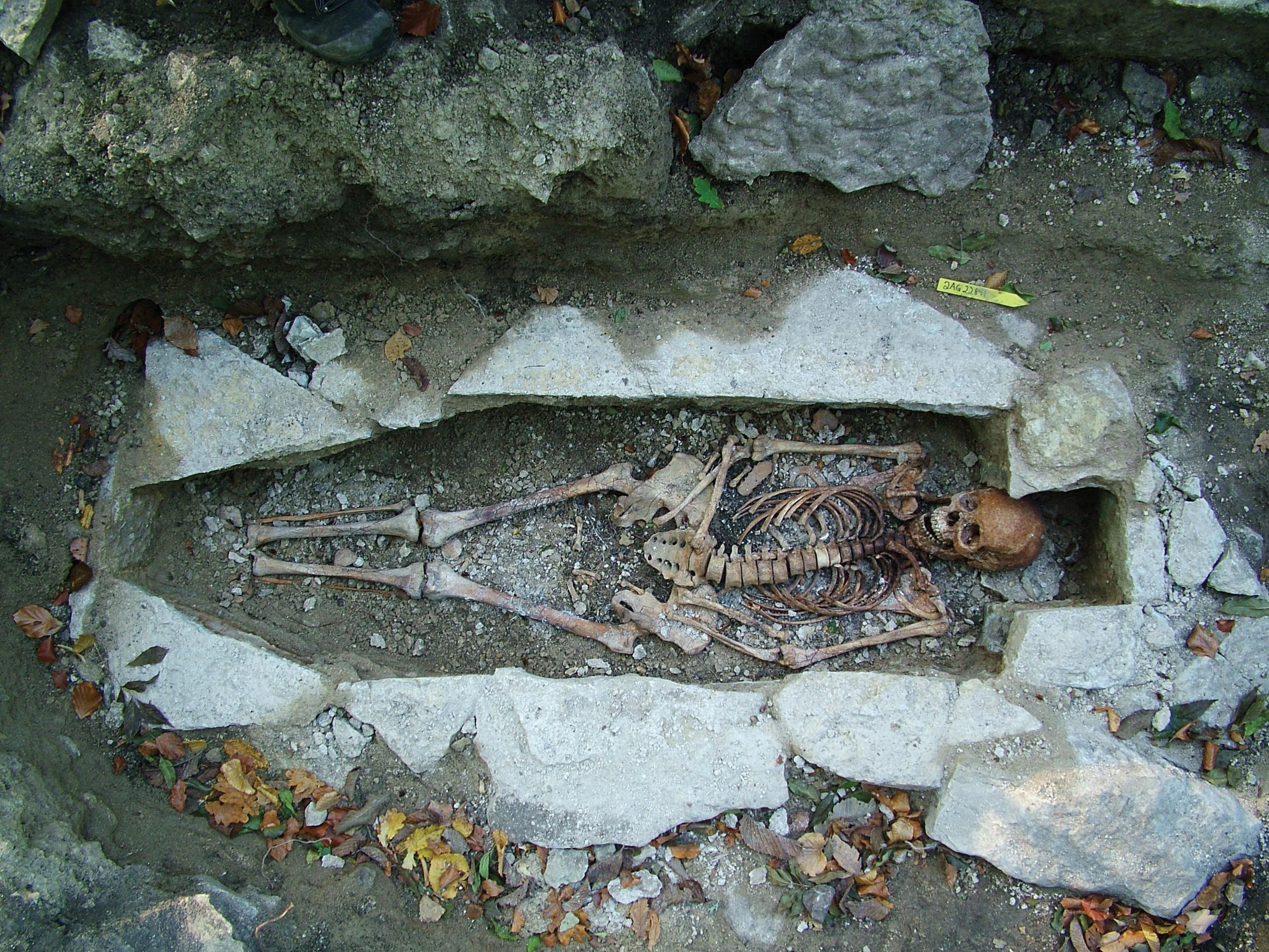 Vikingegrav med menneskeknogler i.