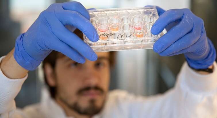 Forsker i laboratoriet